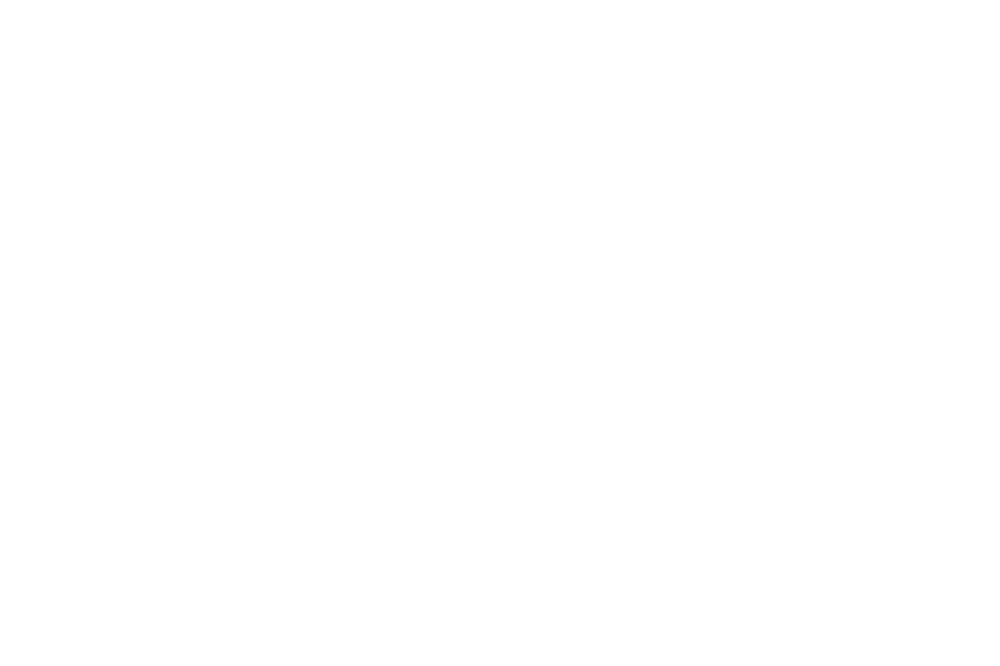 Logo Arminius Tours